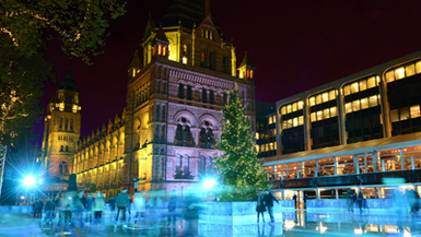 Win a pair of Tickets to the Natural History Museum Ice Rink!