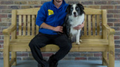 Q&A with a Dogs Trust Behaviourist