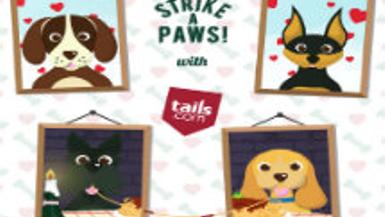 Strike A Paws: Tails.com