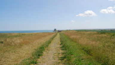 Top Walks in Kent