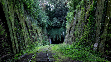 Rail Trails: Top 15 Old Railway Walks in the UK