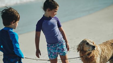 How to keep your dog cool in a heat wave