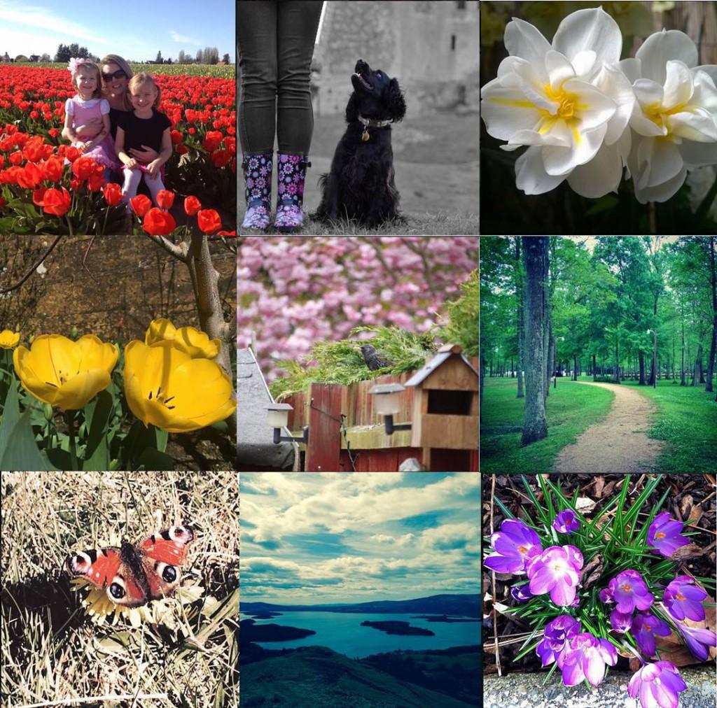 Instagram Comp Winners April